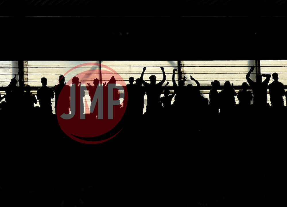Southampton fans celebrate Southampton's Graziano Pelle second goal - Photo mandatory by-line: Robbie Stephenson/JMP - Mobile: 07966 386802 - 25/04/2015 - SPORT - Football - Southampton - ST Marys Stadium - Southampton v Tottenham Hotspur - Barclays Premier League