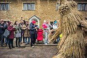 UNITED KINGDOM, Whittlesey: Straw Bear Festival. Crowds watch in excitement as 'The Bear', traditionally a mischievous straw character, dances through the streets of Whittlesey during the Straw Bear festival this weekend. The three day festival, which originated in 1882, consists of traditional Molly, Morris, Clog and Sword dancing as well as parading a large straw character known as 'The Bear' through the town. Rick Findler  / Story Picture Agency