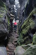 Wanderweg über Leiter durch Felsspalte, Gohrisch, Sächsische Schweiz, Elbsandsteingebirge, Sachsen, Deutschland | Wiking track, ladder, rocks, Gohrisch, Saxon Switzerland, Saxony, Germany
