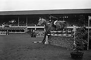 08/05/1964<br /> 05/08/1964<br /> 08 May 1964<br /> R.D.S. Spring Show Ballsbridge Dublin, Championship Showjumping,