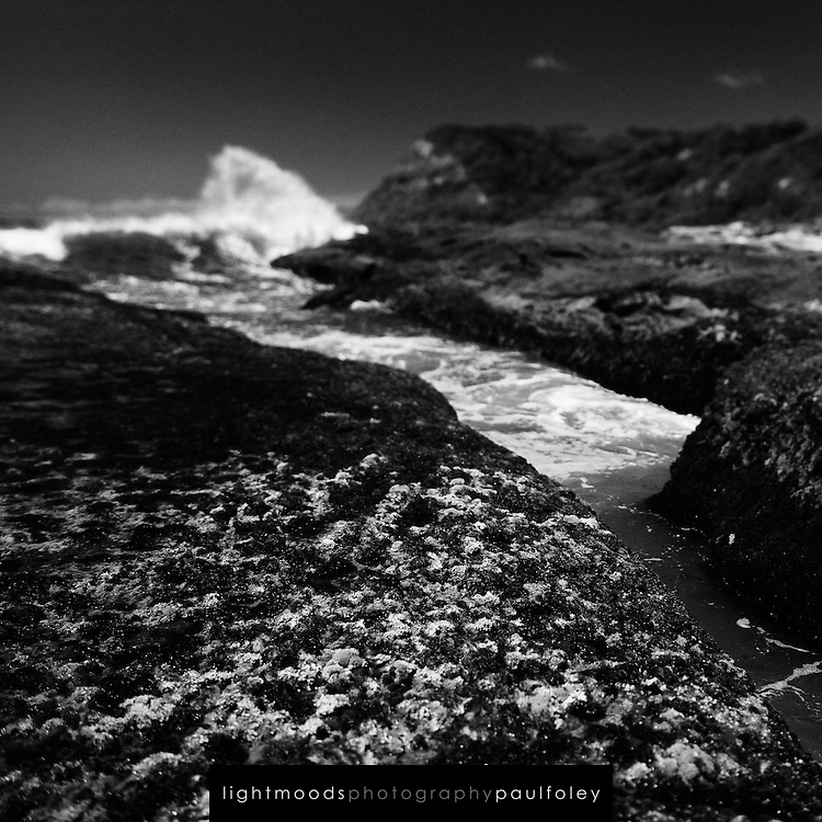 Detail of rocky shoreline, Dudley Beach, East Coast Australia.