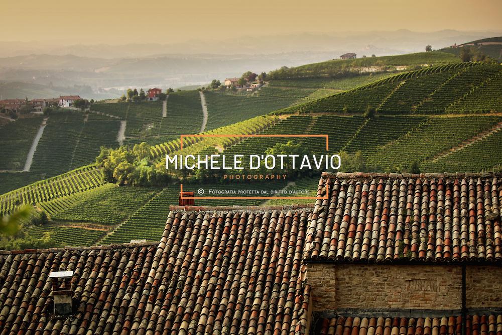 Italy, Piedmont, Langhe, near Alba, ...... reportage aereo realizzato con un pallone aerostatico frenato