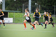 WELLINGTON V HAWKES BAY QF 3