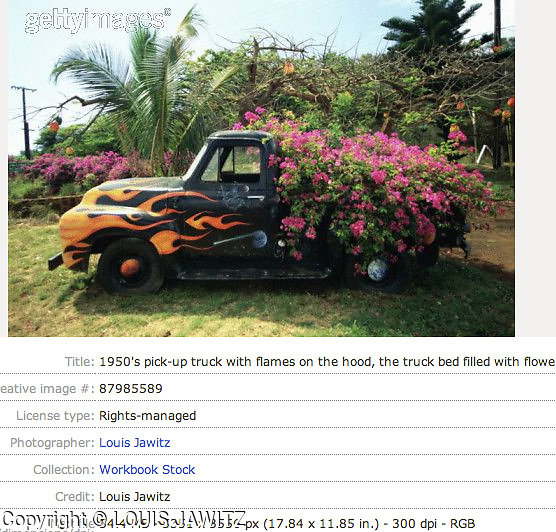 1950's FORD pick-up truck with flames on hood, the truck bed filled with flowers.