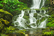 Dickson Falls<br /> Fundy National Park<br /> New Brunswick<br /> Canada
