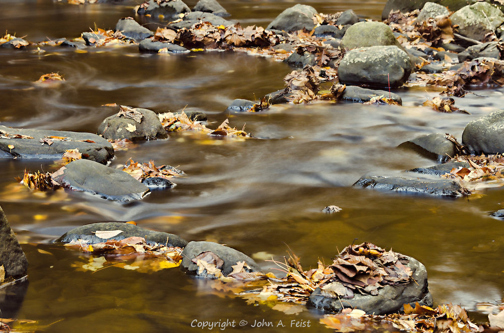 In the late fall, the water levels are often low exposing some of the rocks that make up the stream bed.  As the water flows through and around the rocks it caries some of the fallen leaves but also creates interesting flows, pools and shapes.