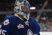 Jonathan Bernier during a game against the Rochester Americans in Rochester, New York, USA on Friday, December 4, 2015.