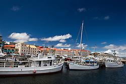 Boats line Victoria Dock, Hobart, Tasmania, Australia