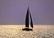 Golden Sailboat Silhouette on Long Island Sound at Sunset