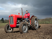 Farmer uses vintage red fergusson tractor to plough field ready for planting crops.
