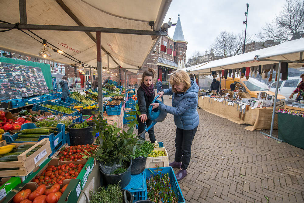 Two women tend to produce at a market in Amsterdam, Netherlands
