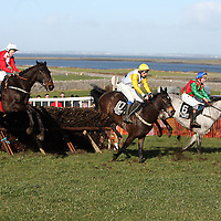 Action from the 2nd race at the annual Bellhabour point to point on Sunday.<br /> Photograph by Yvonne Vaughan