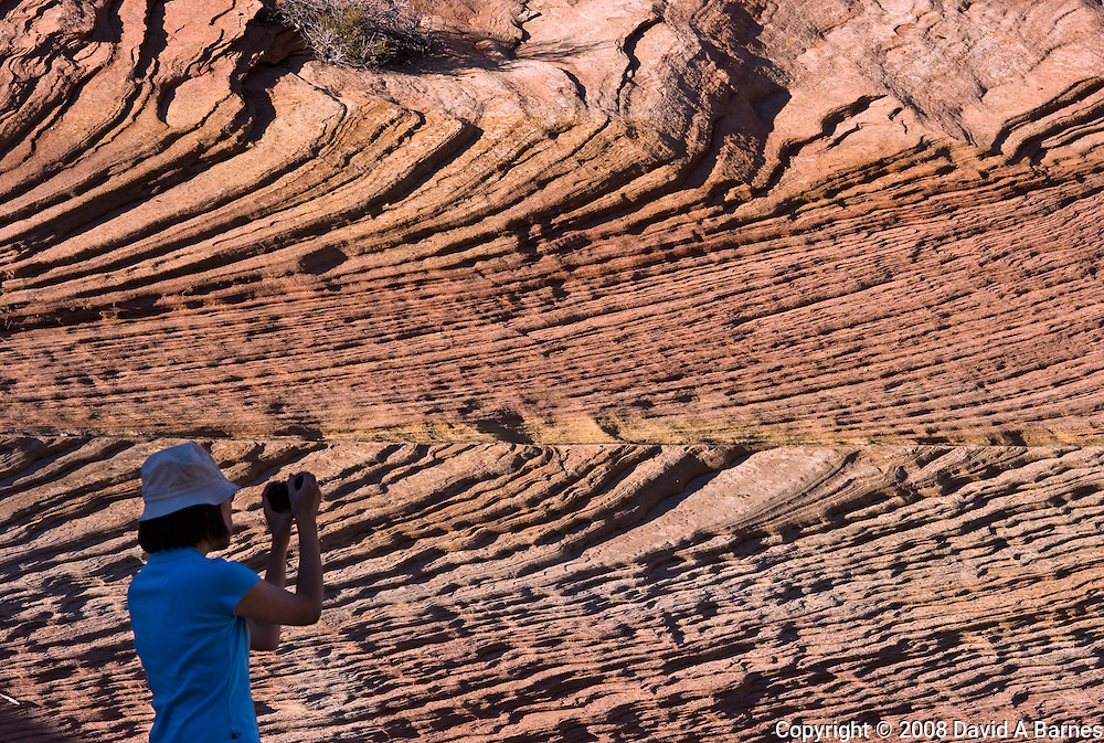 Woman photographing, Zion National Park, Utah, USA