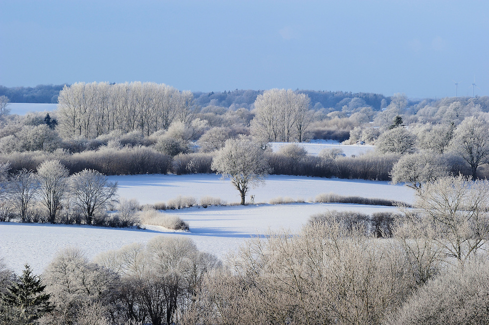 Schleswig-Holstein winter landscape with fields, hedges and oaks. Kiel, Germany   Schleswig holstein winter Landschaft mit Feldern, Hecken und Eichen. Kiel, Deutschland