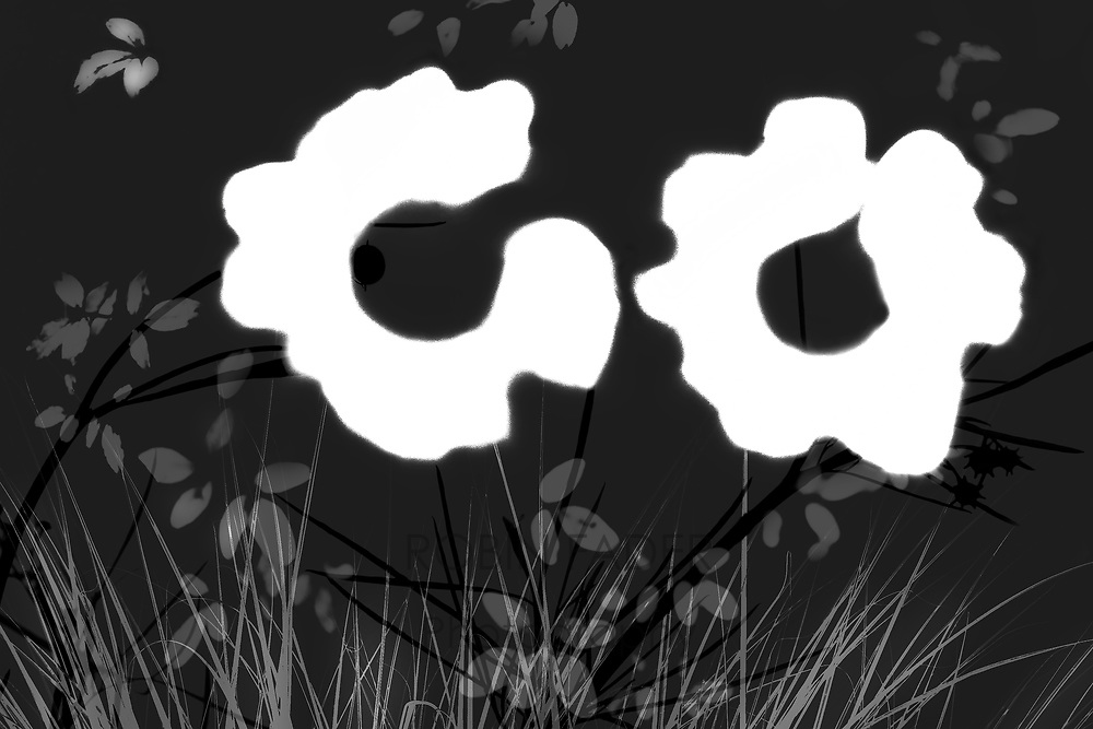 Abstract flower bouquet in high contrast black and white.