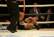 Picture by Alan Stanford/Focus Images Ltd +44 7915 056117<br /> 16/11/2013<br /> Frankie Borg is out on his feet during their middleweight bout at Glow Bluewater, Greenhithe.