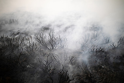 """© Licensed to London News Pictures . 27/06/2018 . Saddleworth , UK . Smouldering , scorched earth in the wake of the fire . Homes are evacuated and a Major Incident is declared as fire-fighters work to control large wildfires spreading across Saddleworth Moor and towards residential areas in surrounding towns . Very high temperatures , winds and dry peat are hampering efforts to contain the fire , described as """" unprecedented """" by police and reported to be the largest in living memory . Photo credit : Joel Goodman/LNP"""