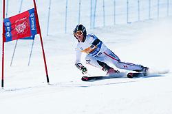 WUERZ Martin, AUT, Giant Slalom, 2013 IPC Alpine Skiing World Championships, La Molina, Spain