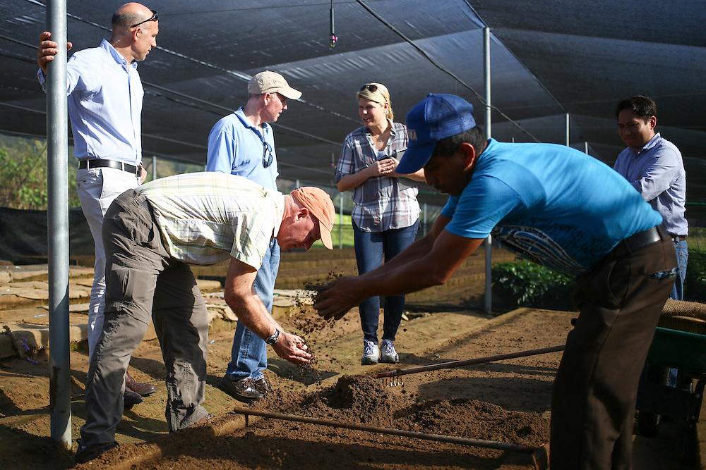 Starbuks EVP for Global Coffee, Craig Russell, places soil on newly planted coffee trees near Jaltenango, Chiapas, Mexico. (Joshua Trujillo, Starbucks)