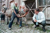 24 AUG 2000, NAUMBURG/GERMANY:<br /> Gerhard Schroeder, SPD, Bundeskanzler, betrachtet einen Hufschmied und einen Kutscher, die ein Kaltblutpferd beschlagen, auf einem Gehoeft in der Naehe von Naumburg, Sommerreise des Kanzlers durch die Ostdeutschen Bundeslaender<br /> IMAGE: 20000824-01/03-12<br /> KEYWORDS: Gerhard Schröder, Pferd, Tier, horse, animal, Hufeisen, Handwerk, Arbeit, work