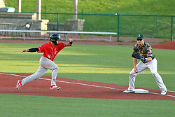 29 July 2016: Connor Oliver hustles back to first base as the throw comes to Aaron Dudley during a Frontier League Baseball game between the Lake Erie Crushers and the Normal CornBelters at Corn Crib Stadium on the campus of Heartland Community College in Normal Illinois
