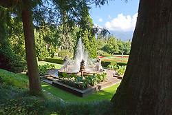Villa Taranto Botanical Gardens (Giardini Botanici Villa Taranto) is in the town of Pallanza on the western shore of Lake Maggiore. The gardens were established 1931-1940 by Scotsman Neil Boyd McEacharn who bought an existing villa and its neighboring estates, cut down more than 2000 trees, and undertook substantial changes to the landscape, including the addition of major water features employing 8 km of pipes. Today the gardens contain nearly 20,000 plant varieties representing more than 3,000 species, set among 7 km of paths. Among its collections are azalea, cornus, greenhouses of Victoria amazonica, and 300 types of dahlias.mausoleum.