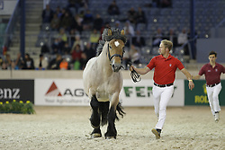 Reiten, Pferdesport, Jungzüchter, Schaubild<br /> Aachen - Europameisterschaften 2015<br /> Zuchttag<br /> © www.sportfotos-lafrentz.de/Stefan Lafrentz