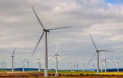 Wind Turbines near the village of Forth in South Lanarkshire, Scotland<br /> <br /> (c) Andrew Wilson | Edinburgh Elite media