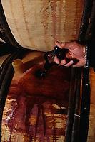ca. 1990-2000, Burgundy, France --- Winemaker Testing Wine --- Image by © Owen Franken