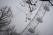 Early morning fog surrounds the London Eye on the Thames rver in London, England. Seen from a low angle, through the bare branches of winter trees, we see the pods of the most popular tourist attraction in Britain. The London Eye is a giant Ferris wheel on the South Bank of the River Thames in London, England. Also known as the Millennium Wheel, its official name was originally the British Airways London Eye, then the Merlin Entertainments London Eye, and since 20 January 2011, the EDF Energy London Eye following a three-year sponsorship deal