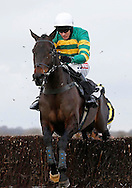 Barry Geraghty riding Regal Encore clears the last fence before winning the SIS Novices´ Chase at Plumpton Racecourse - 13 Dec 2015