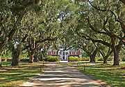 Boone Hall Plantation Avenue of the Oaks.