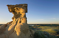Sandstone hoodoo near Hell Creek Montana