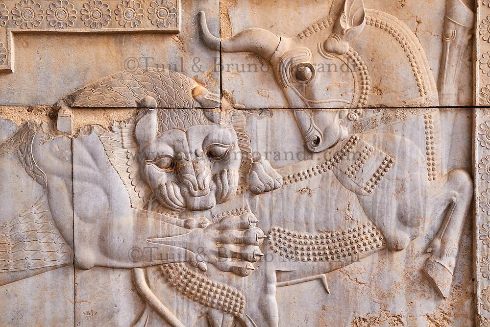 Iran, province du Fars, Persepolis, patrimoine mondial de l'UNESCO, bas relief // Iran, Fars Province, Persepolis, World Heritage of the UNESCO, Bas-relief of a fighting bull and lion