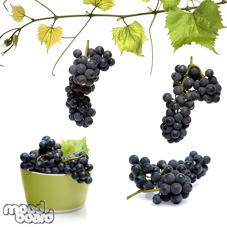 Grapes on white background - studio shot