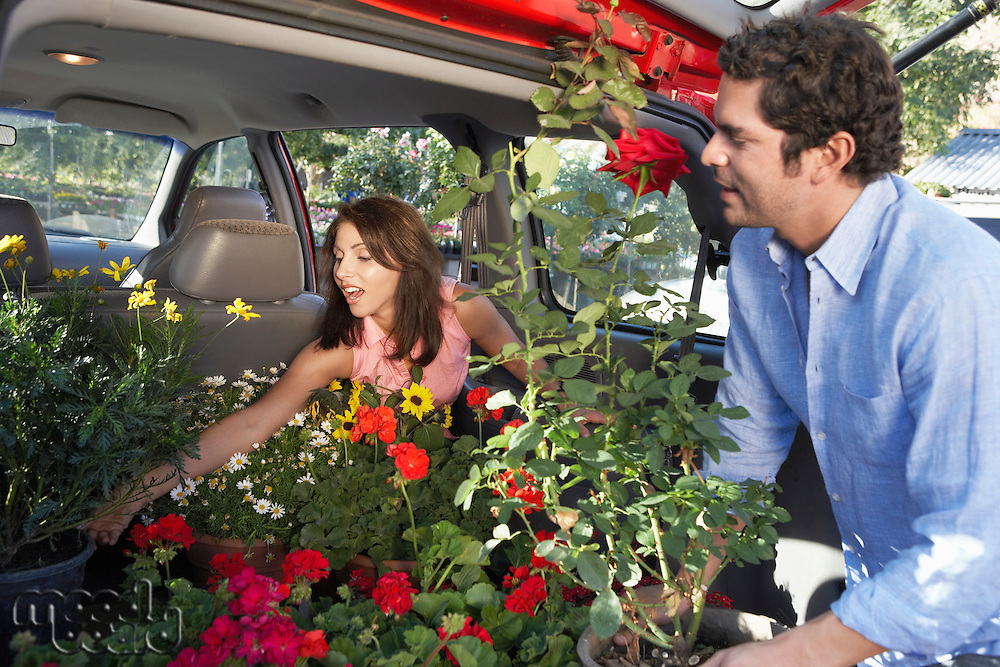 Couple Loading Potted Plants into Trunk of Car