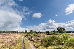Westerheide, Laren, Noord Holland, het Gooi, GNR