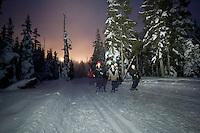 A family snowshoes along the track-set trails in Paradise Meadows at the base of Mt. Washington in Strathcona Park.  Mt. Washington, The Comox Valley, Vancouver Island, British Columbia, Canada.