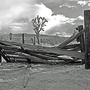 Joshua Gate