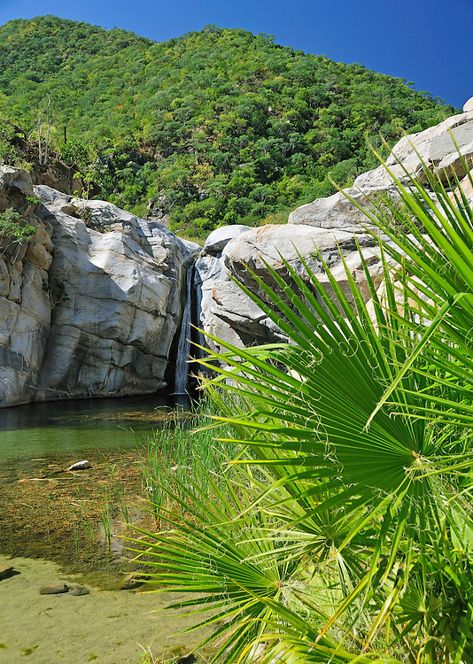 Waterfall, Canon de la Zorra, in the Sierra de la Laguna, Santiago, Baja California Sur, Mexico