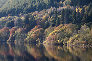 Loch Tay reflections, Kenmore, Highland Perthshire, autumn