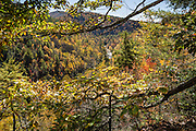 Fall foliage colors at Gorge View Overlook, in Linville Gorge Wilderness Area, Burke County, Pisgah National Forest, North Carolina, USA. Nearby, Linville Falls drop 90 feet in a multi-level cascade, viewable from several overlooks along two trails starting from Linville Falls Visitors Center, run by the National Park Service. Directions: Turn eastwards at Mile Post 316.3 of the Blue Ridge Parkway (north of where US 221 crosses the Parkway and south of where NC 181 crosses). Linville River begins at Grandfather Mountain and enters the 12-mile Linville Gorge at Linville Falls. Linville Gorge, near the town of Linville Falls (66 miles north of Asheville), is the deepest and one of the most rugged and scenic gorges in the Eastern USA (qualifying for the nickname Grand Canyon of the East, along with more than a dozen chasms likewise tagged in other Eastern states). It is protected by Linville Gorge Wilderness Area, within Pisgah National Forest. Spared by its rugged terrain from clear-cutting in the early 1900s, Linville Gorge has some of the best remnant stands of uncut, old-growth forest in the southern Appalachians. This is one of the few places where the Rosebay, Catawba, and Carolina rhododendron grow side by side.