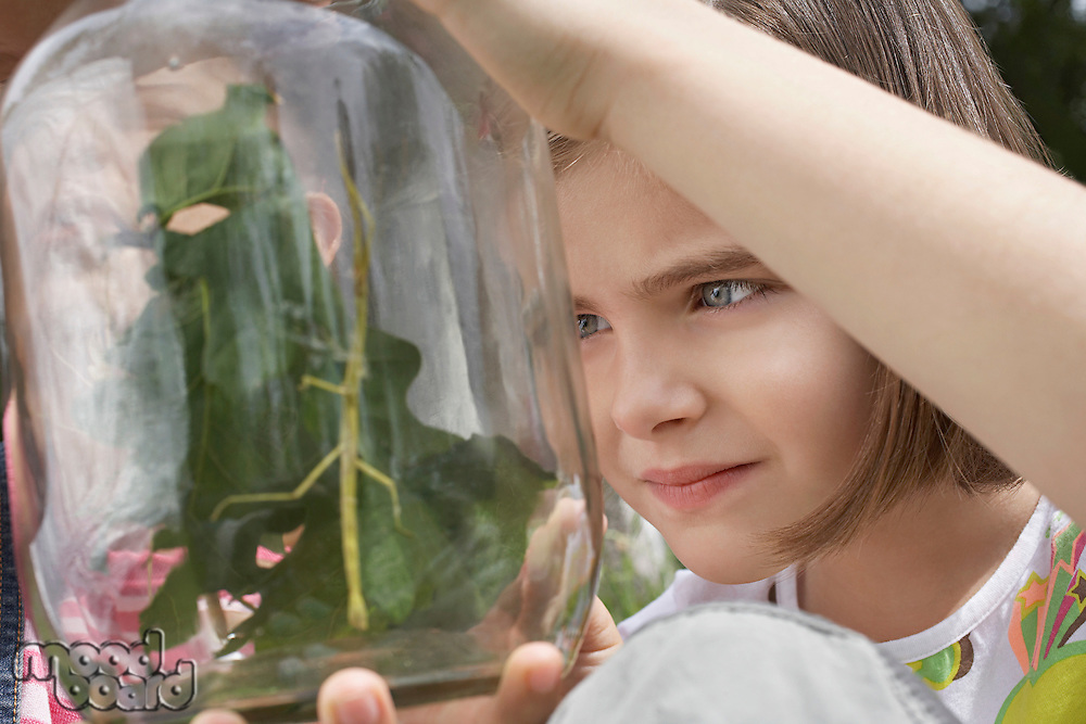 Girl (7-9) examining stick insects in jar close-up