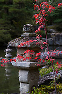 Red acer leaves and a stone lantern in the Katsura Imperial Villa Garden, Kyoto, Japan