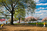 New York City: Spring baseball at Riverside Drive park