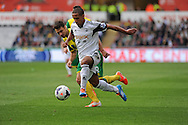 Wayne Routledge of Swansea City makes a break through the Norwich defence.<br /> Barclays premier league match , Swansea city v Norwich city at the Liberty stadium in Swansea, South Wales on Saturday 29th March 2014.<br /> pic by Phil Rees, Andrew Orchard sports photography.