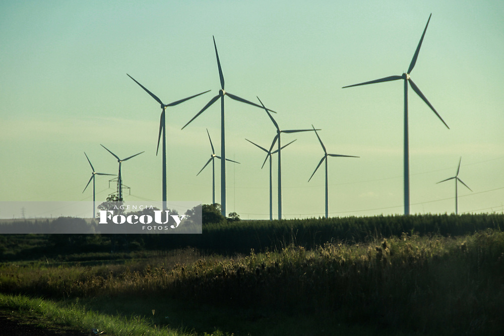 Tacuaremb&oacute;, Uruguay, Febrero de 2016.<br /> Molinos generadores de energ&iacute;a de UTE en la localidad de PAMPA, sobre ruta 5.<br /> Foto: Gaston BRitos - AFF / Agencia Foco