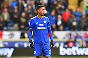 Victor Camarasa (21) of Cardiff City during the Premier League match between Cardiff City and Chelsea at the Cardiff City Stadium, Cardiff, Wales on 31 March 2019.