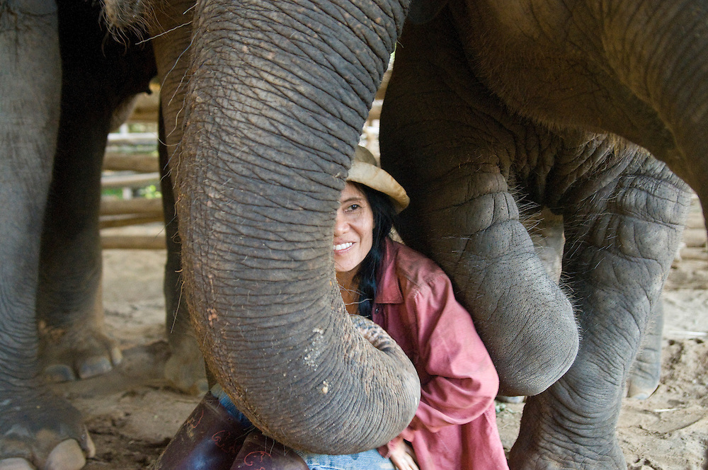 "Sangduen ""Lek"" Chailert with baby boy Chang Yim (Smiling Elephant) at the Elephant Nature Park near Chiang Mai, Thailand.  Sangduen ""Lek"" Chailert founded the park as a sanctuary and rescue centre for elephants.  The park currently has 32 elephants sponsored and supported by volunteers from all over the world."