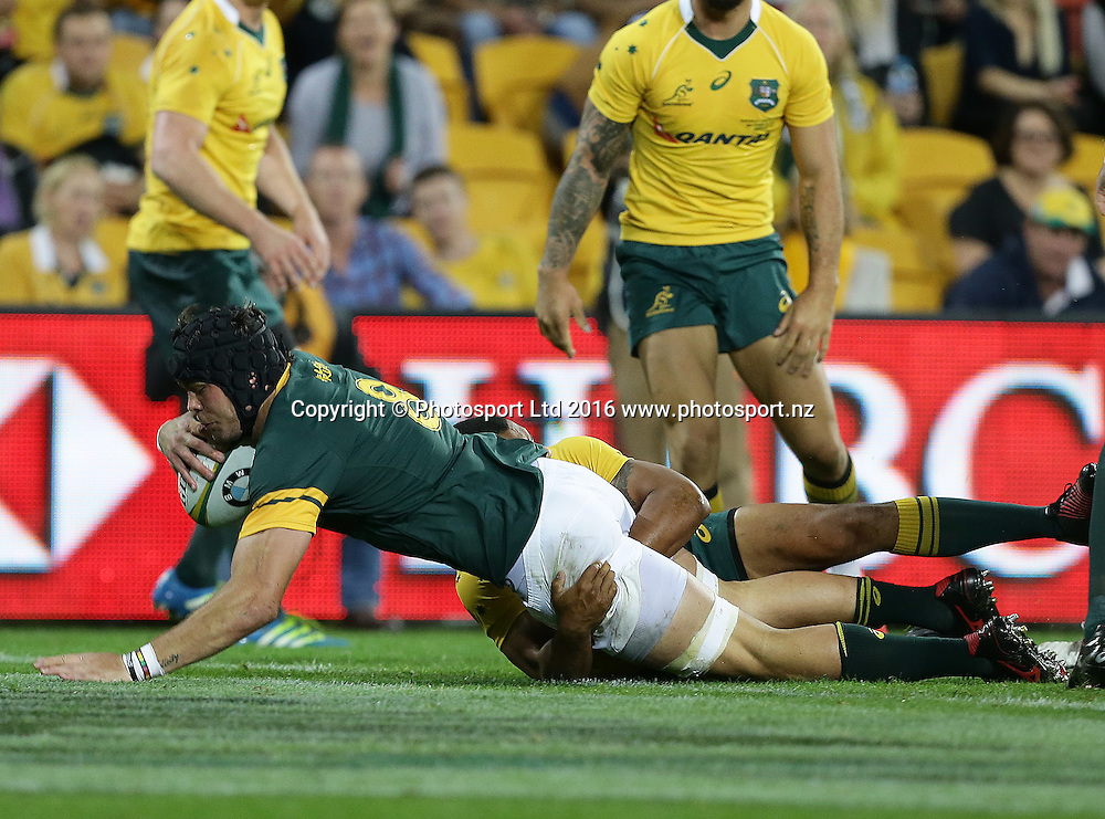 South Africa's Warren Whiteley scores a try during The Rugby Championship, Australia v South Africa, Suncorp Stadium, Brisbane, Australia. Saturday 10 September 2016. Copyright Image: Tertius Pickard / www.photosport.nz